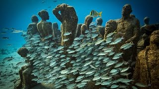 An Underwater Art Museum, Teeming with Life | Jason deCaires Taylor | TED Talks