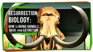 Resurrection Biology: How to Bring Animals Back From Extinction