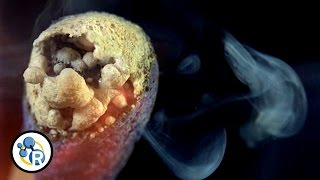 The Chemistry of Matches (In Super Slow Motion)