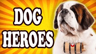 Top 10 Most Courageous Dogs — TopTenzNet