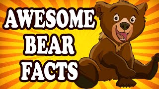 Top 10 Awesome Fun Facts About Bears
