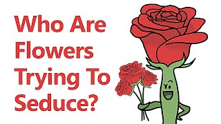 Who Are Flowers Trying To Seduce?