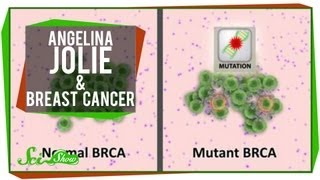 Angelina Jolie & Breast Cancer