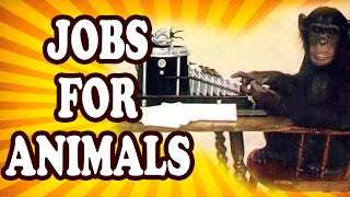 Top 10 Surprising Jobs Outsourced to Animals