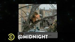 Emily Fleming, Matt Braunger, Jon Daly - Deep Dish Pizza - @midnight with Chris Hardwick