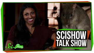 SciShow Talk Show: Crash Course Physics Host Dr. Shini Somara & Sydney the Brush-Tailed Bettong