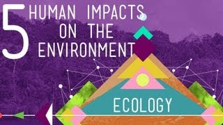 5 Human Impacts on the Environment: Crash Course Ecology #10