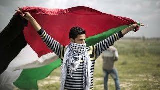 POLL: Palestinians On How To Achieve Statehood