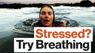 Stressed? Use This Breathing Technique to Improve Your Attention and Memory, with Emma Seppälä