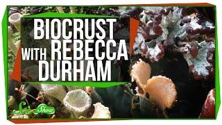 Biocrust with Rebecca Durham