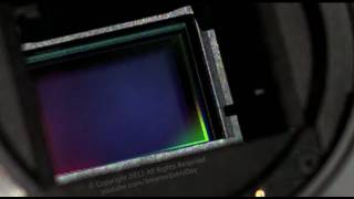 High Speed video of Canon DSLR Shutter - Smarter Every Day 40
