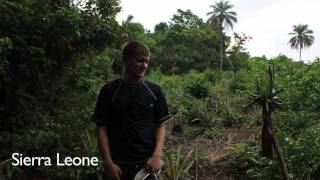 Do pineapples grow on trees? - Smarter Every Day 9