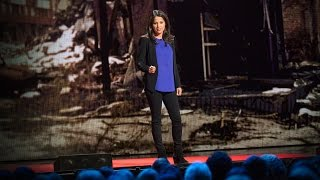 The secret to effective nonviolent resistance | Jamila Raqib