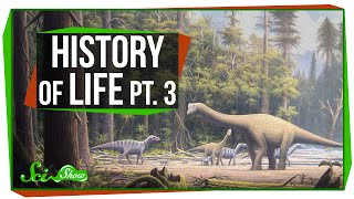 A Brief History of Life: Dinosaur Time!