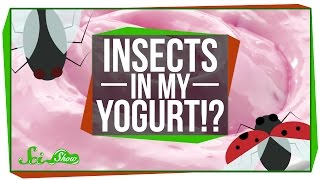 Are There Really Insects in Yogurt?