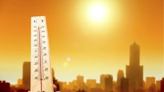 July 2016 Was The Hottest Month Ever Recorded