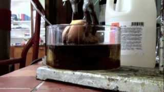 Cheeseburger in Hydrochloric Acid (reaction only)