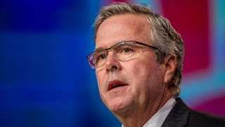 The Jeb Bush Campaign Is On The Ropes