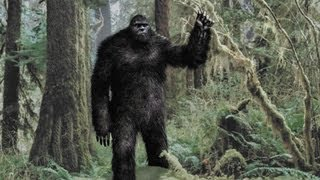Bigfoot: New Evidence