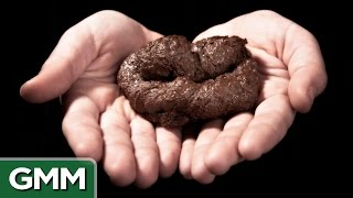 7 Surprising Uses for Poop