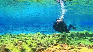 Diving Between the Continents (Silfra, Iceland) - Smarter Every Day 161