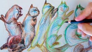 Sneak Peek of Flipping Cat Math | SED 58 Intro
