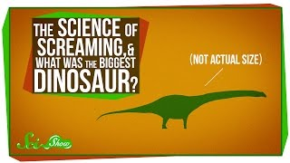 The Science of Screaming, And What Was the Biggest Dinosaur?