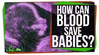 How Can One Person's Blood Save 2 Million Babies?