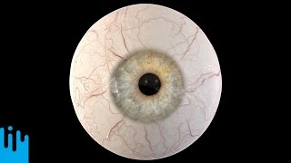 EYEBALL RECONSTRUCTION -- Mind Blow #110