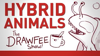 Hybrid Animals - THE DRAWFEE SHOW