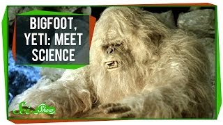 Bigfoot, Yeti: Meet Science