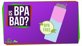 Should I Be Afraid of BPA?