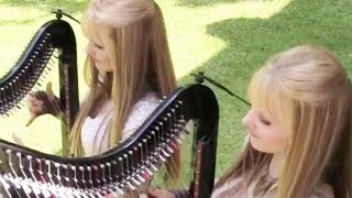 HARP TWINS and more... -- BiDiPi #17