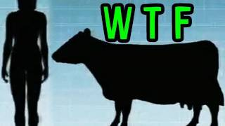 Human Cow BREAST MILK??? -- Mind Blow #18