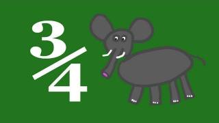 3/4 and Kleiber's Law - Numberphile