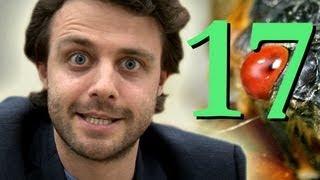 Cicada 17 - Numberphile