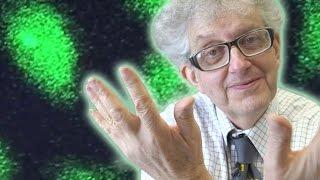 2014 Nobel Prize in Chemistry - Periodic Table of Videos