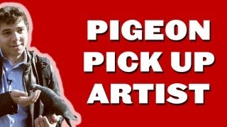 Pigeon Pick Up Artist