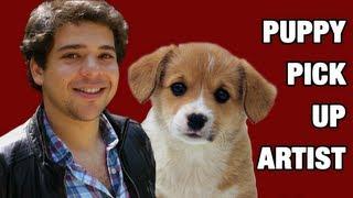 Puppy Pick Up Artist