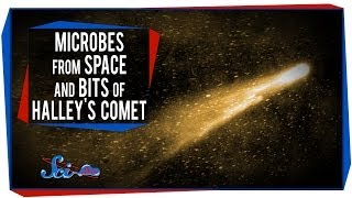 Microbes From Space and Bits of Halley's Comet