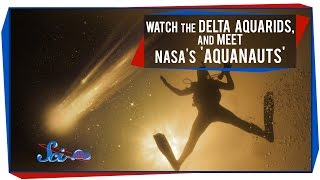 Watch the Delta Aquarids, and Meet NASA's 'Aquanauts'