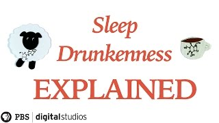 Sleep Drunkenness Explained