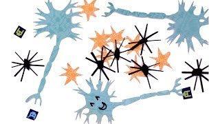 Amazing Brain Cells You've Never Heard of