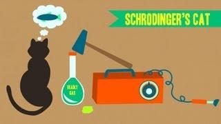 IDTIMWYTIM: Schrodinger's Cat