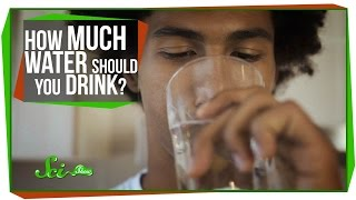 World's Most Asked Questions: How Much Water Should I Drink a Day?