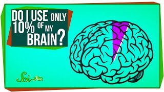 Do I Only Use 10% of My Brain?
