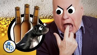 Why Beers Get Skunked (And How to Stop It) - Reactions