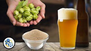 Craft Beer Chemistry