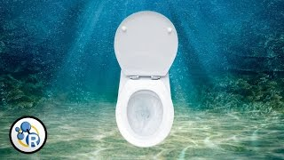 Is it OK to Pee in the Ocean?
