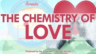 The Chemistry of Love - Reactions